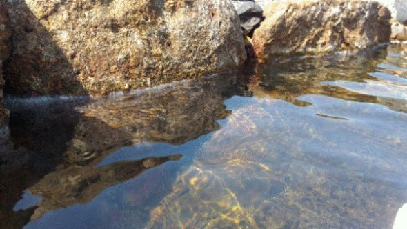 【屋久島】混浴の平内海中温泉に女性はいるのか5