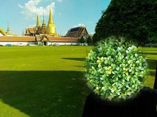 バンコクの三大寺院観光【渡し船で効率よく回ろう】7