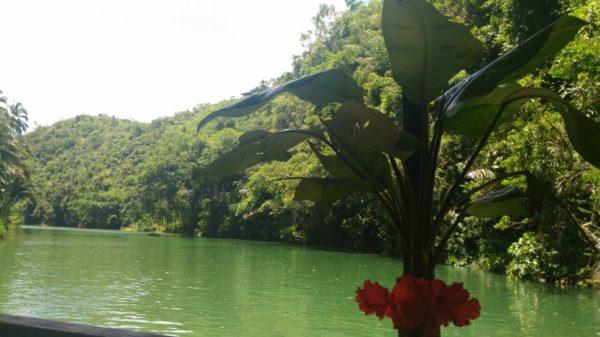 ボホール島のロボック川2