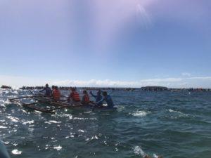 【セブ】シュノーケリングでジンベイザメと泳ぐ方法と手順・ポイント3