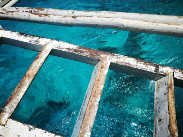 【セブ】シュノーケリングでジンベイザメと泳ぐ方法と手順・ポイント4