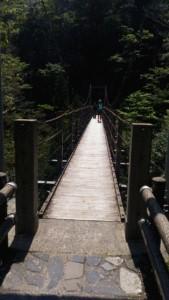 初心者の屋久島縄文杉登山【登山の方法と注意点】3