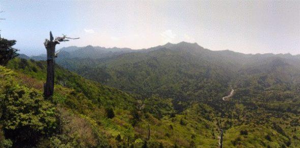 【屋久島】白谷雲水峡往復の所要時間と見どころ【登山初心者が紹介】10