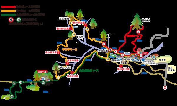 白谷雲水峡の往復コースマップと所要時間