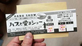 奄美の原ハブ屋で一味変わったハブショーを体験2