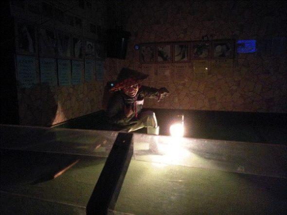 奄美の原ハブ屋で一味変わったハブショー「ハブと愛まショー」を体験4
