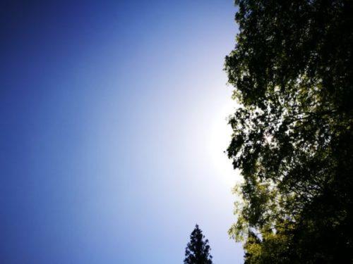 光滝寺キャンプ場を紹介【大阪・河内長野にある穴場キャンプ場】3