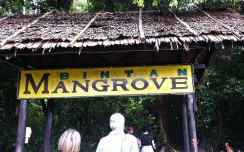 ビンタン島で楽しめるアクティビティ【シンガポールから日帰り可】1
