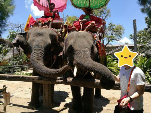 「Chang Puak Camp」で象に乗る&トラと写真も【バンコク近郊】5
