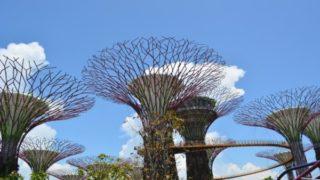ガーデンズバイザベイの魅力と見どころ【常夏シンガポールの巨大植物園】1