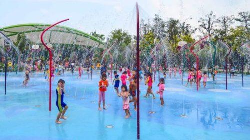 ガーデンズバイザベイの魅力と見どころ【常夏シンガポールの巨大植物園】11