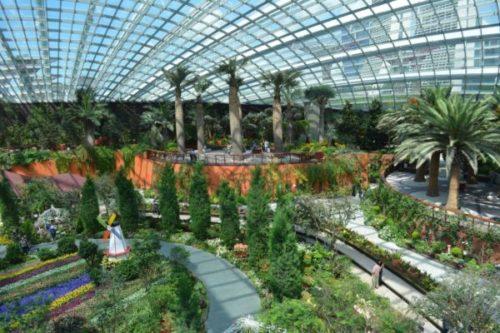 ガーデンズバイザベイの魅力と見どころ【常夏シンガポールの巨大植物園】4