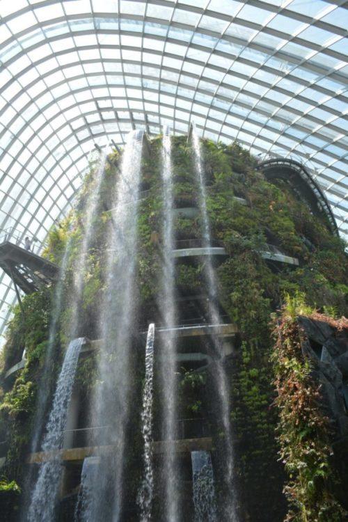 ガーデンズバイザベイの魅力と見どころ【常夏シンガポールの巨大植物園】7 (2)