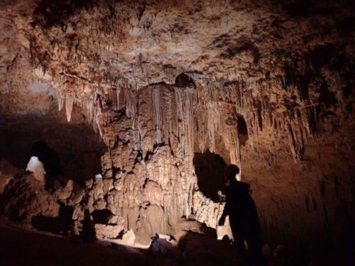 沖永良部島のケイビングで行った洞窟1