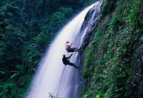 カオヤイ国立公園の楽しみ方と行き方【バンコク日帰り観光】5