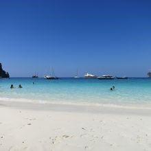 ピピ島にあるモンキービーチは名前の通り「猿が生息しているビーチ」1