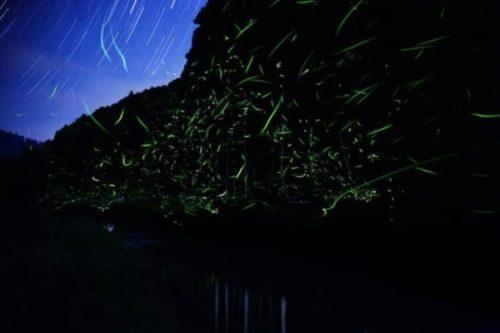 新潟県にある高級温泉宿「里山十帖」をレビュー!コンセプトが違う12部屋と田舎の自然を楽しもう11