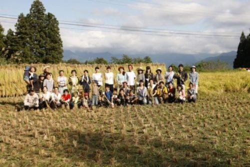 新潟県にある高級温泉宿「里山十帖」をレビュー!コンセプトが違う12部屋と田舎の自然を楽しもう12
